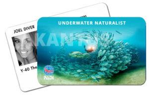 certificação biologia marinha